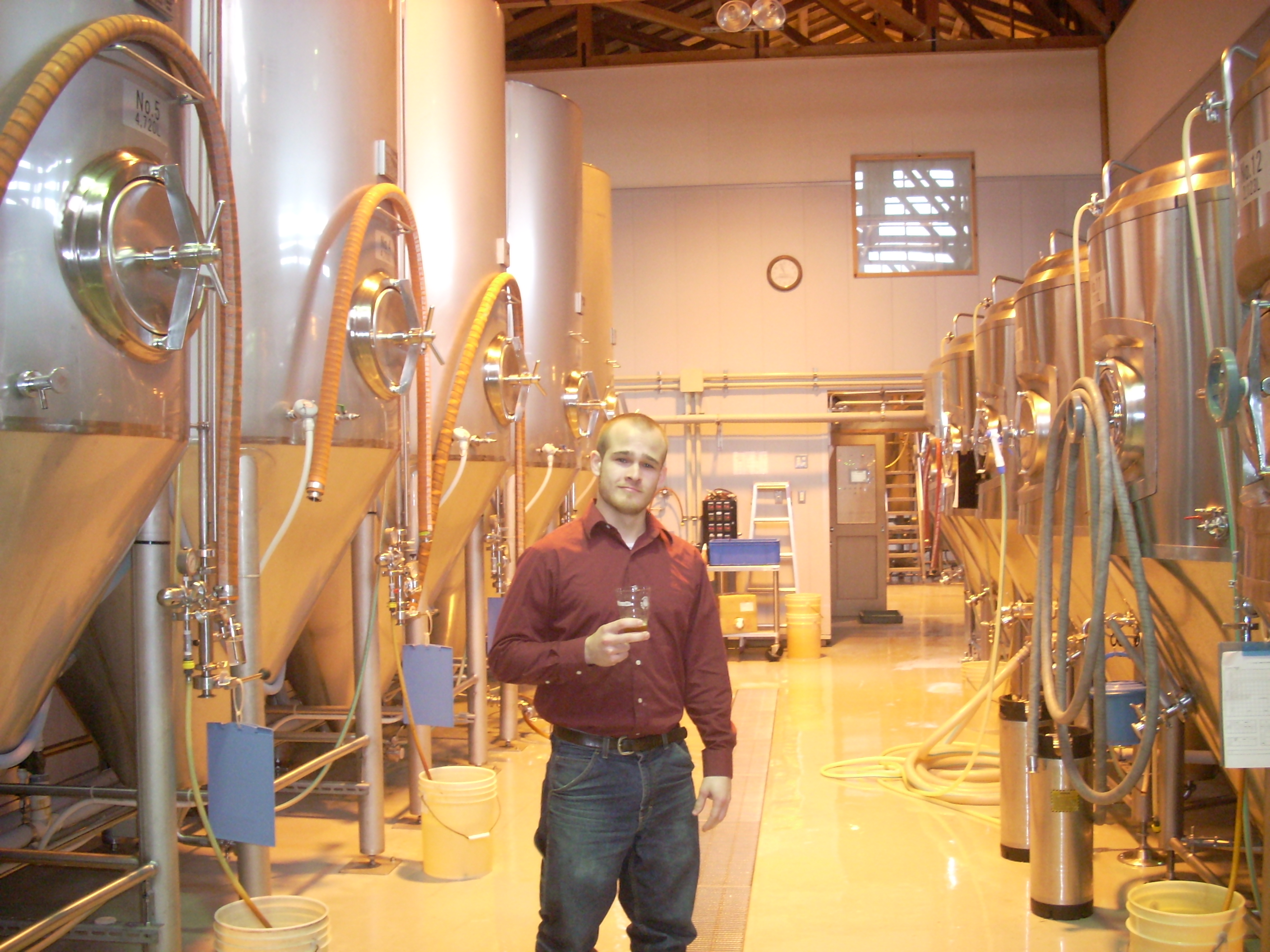 insight brewing bringing the world of beer to the twin cities a